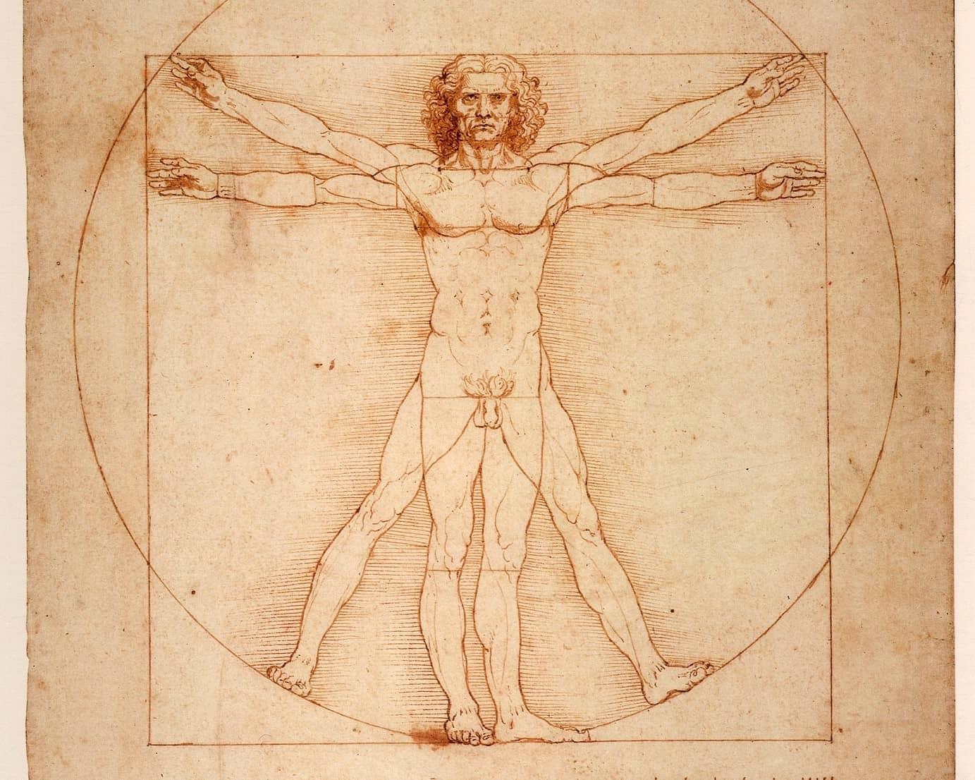 L'homme de Vitruve de Vinci ou l'équilibre